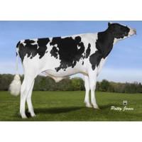 Tinh bò sữa HF - MORSAN MASTERPIECE-ET 94HO14758